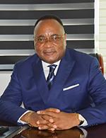 Serge William Landry Massembo Doumou, Directeur général
